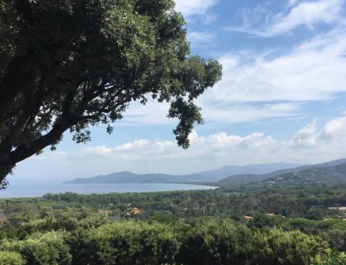 Villa con vista a Punta Ala
